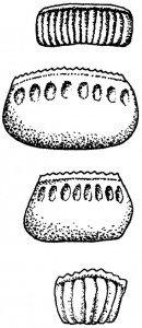 Identifisering av kakerlakkart utfra eggkapsler