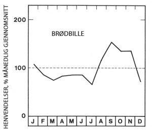Sesong for brødbille - Skadedyr I Naeringsmidler - Side 95