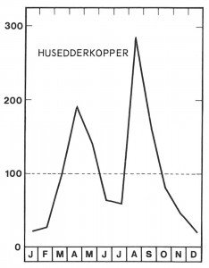 Sesong for husedderkopper - Veggedyr Stikk og kloee - Side 154