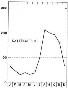 Sesong for kattelopper i august - Veggedyr Stikk og kloee - Side 96