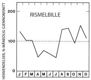 Sesong for rismelbille - Skadedyr I Naeringsmidler - Side 92