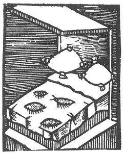Tresnitt over Plinius menneskelopper - Veggedyr Stikk og kloee - Side 92