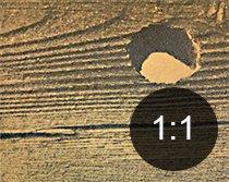 Borehull i tre fra tredreper - Skadedyr i hus og hytte - side 117